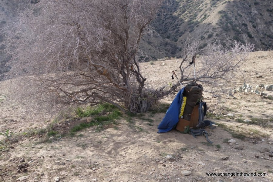 packing up after a night under a thorn tree